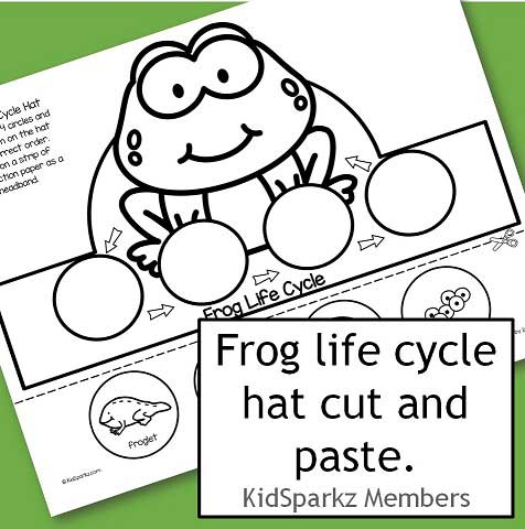 Frog life cycle hat cut and paste