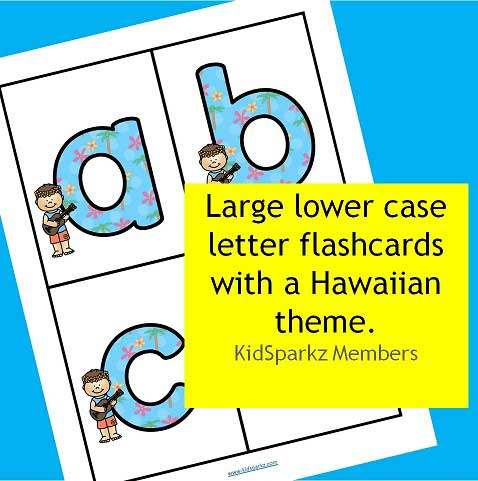 Large Hawaiian theme lower case letter flashcards.
