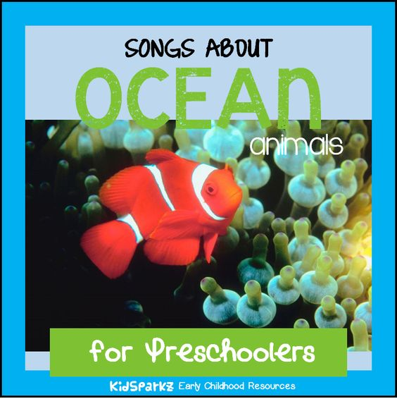 Songs and rhymes about ocean animals for preschool Pre-K and