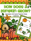 Pumpkin life cycle activity pack - free for members
