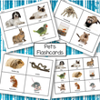 Set of pets flashcards.